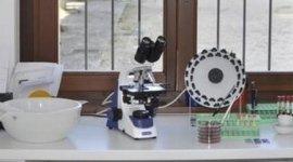 Centro Ippico Il Roncolino, Viggiù (VA), laboratorio