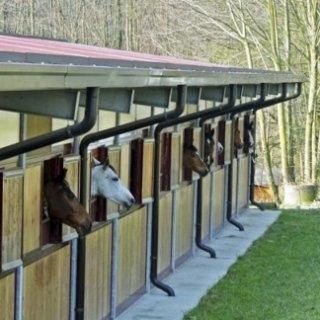 Centro Ippico Il Roncolino, Viggiù (VA), box con finestre