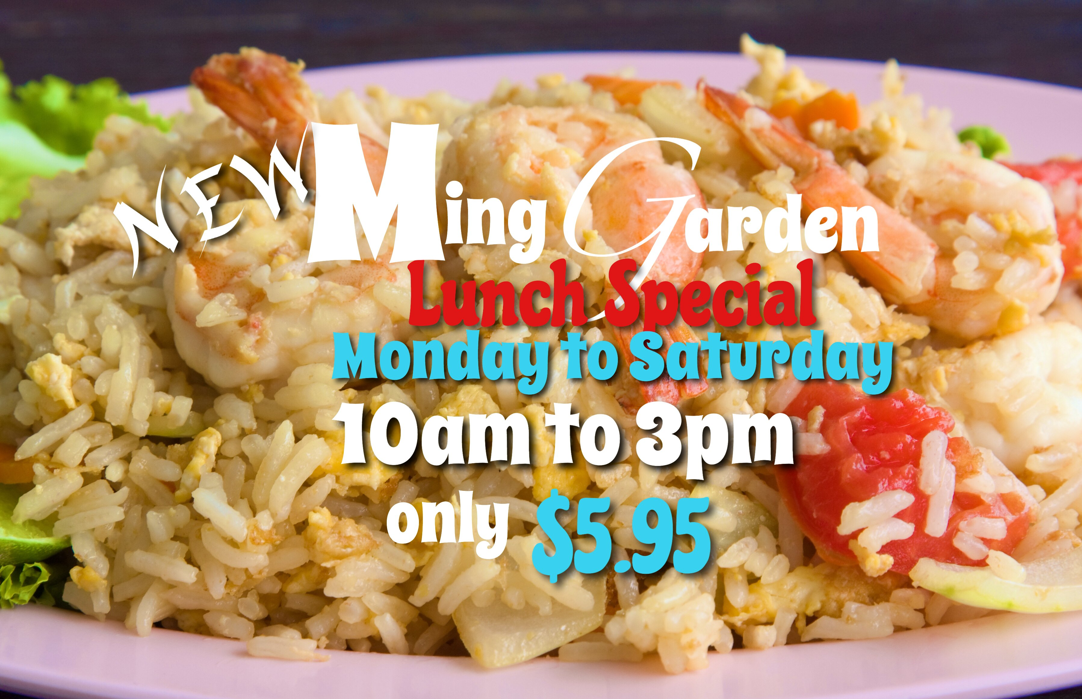 From togo Menu Lunch Special $5.95 Monday to Saturday from 10am - 3pm ...