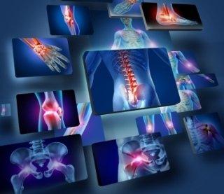 fisiokinesiterapia Ancona