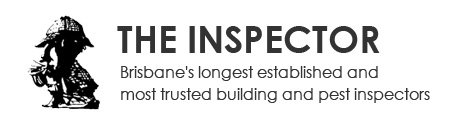 expert pest control and building inspections
