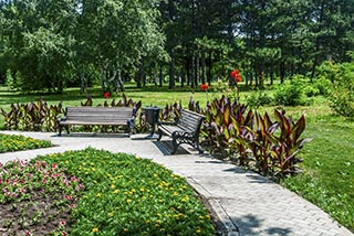 Landscape Design College Station, TX