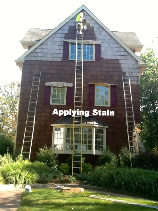 applying stain