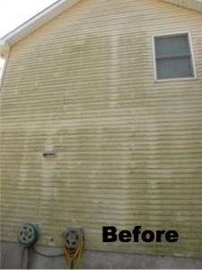 pressure cleaning and mold removal