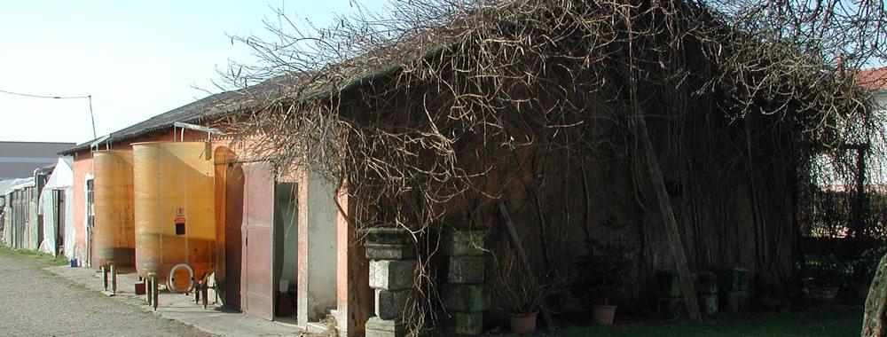 una casa e sopra il tetto dei rami