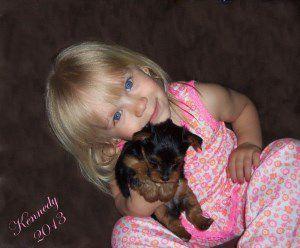 little girl holding Yorkie
