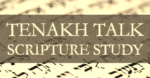 Study the Torah with us!