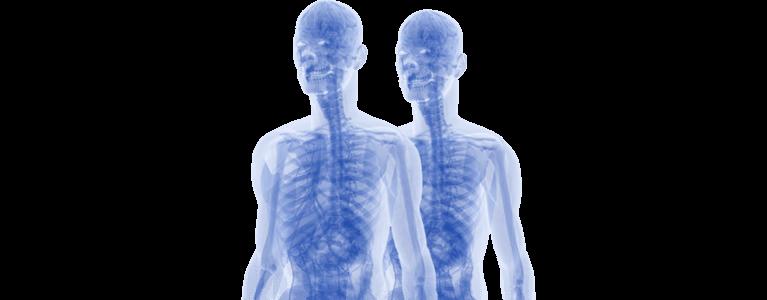 freshwater osteopathy muscoskeletal