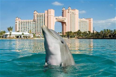 The Atlantis Resort in the Bahamas