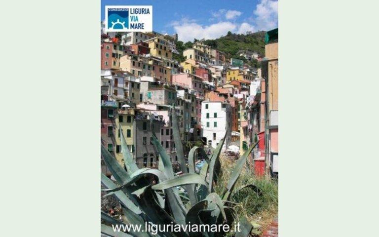 Escursioni cinque terre Riomaggiore