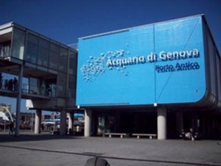 Aquarium of Genoa tours