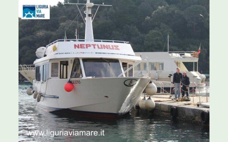 Liguria Neptunus motorboat day trips