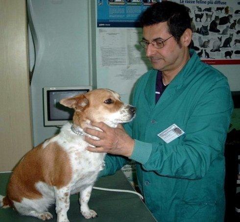 Dott. Piacenza