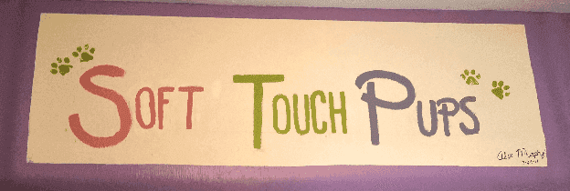 Soft touch Pups banner in Hamilton, OH