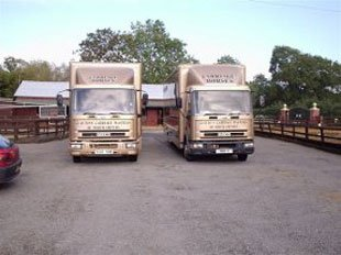 horse and carriage - Northampton - Clayton Carriage Masters - Transports