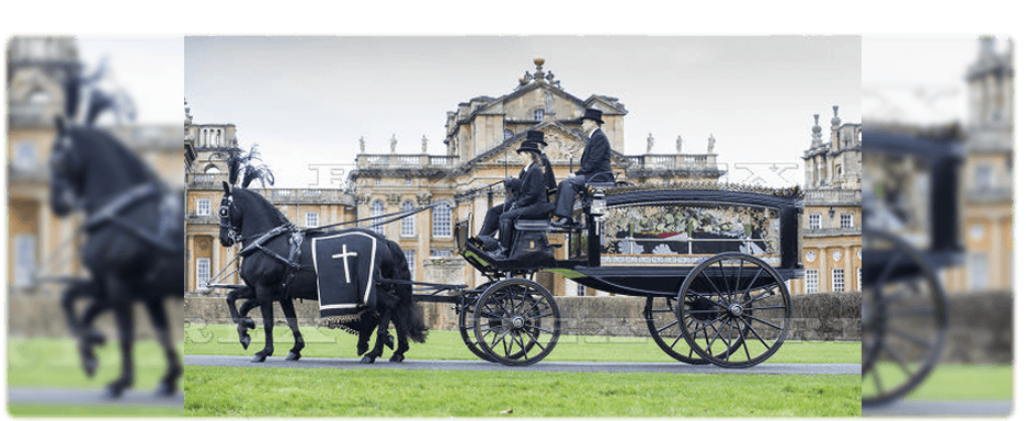 horse and carriage hire - Northampton - Clayton Carriage Masters - horsedrawn hearse