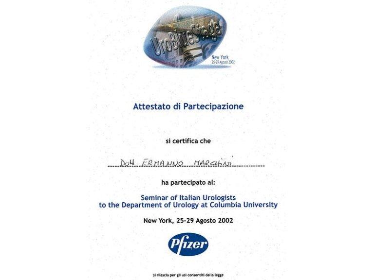 specializzazione urologica