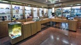 vendita occhiali, contattologia, controllo acustico