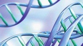 biologia molecolare, biologia genetica, esame tiroide