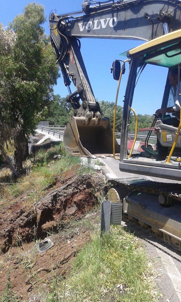 una scavatrice al lavoro in una strada e vicino a un albero