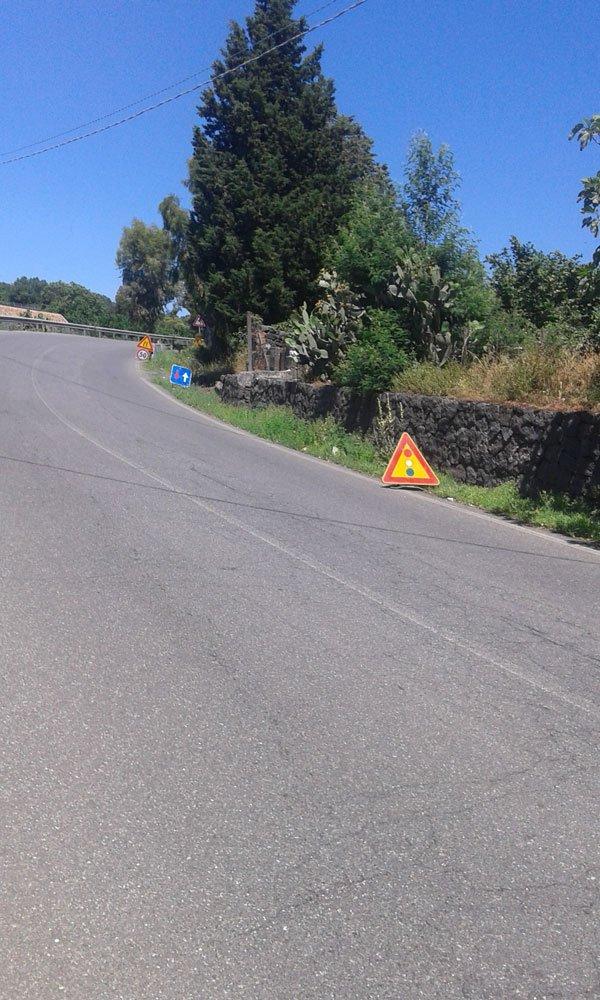 una strada con dei cartelli e degli alberi