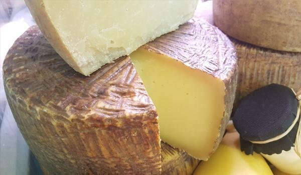 formaggi tipici Sardi