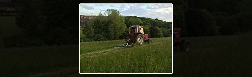 A tractor at work cutting long grass in a field