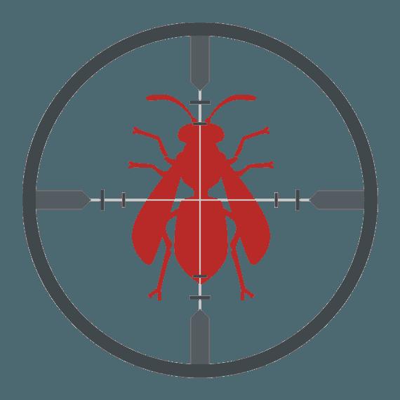Flies icon