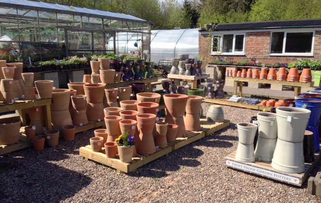 Pots for planting in Sheffield