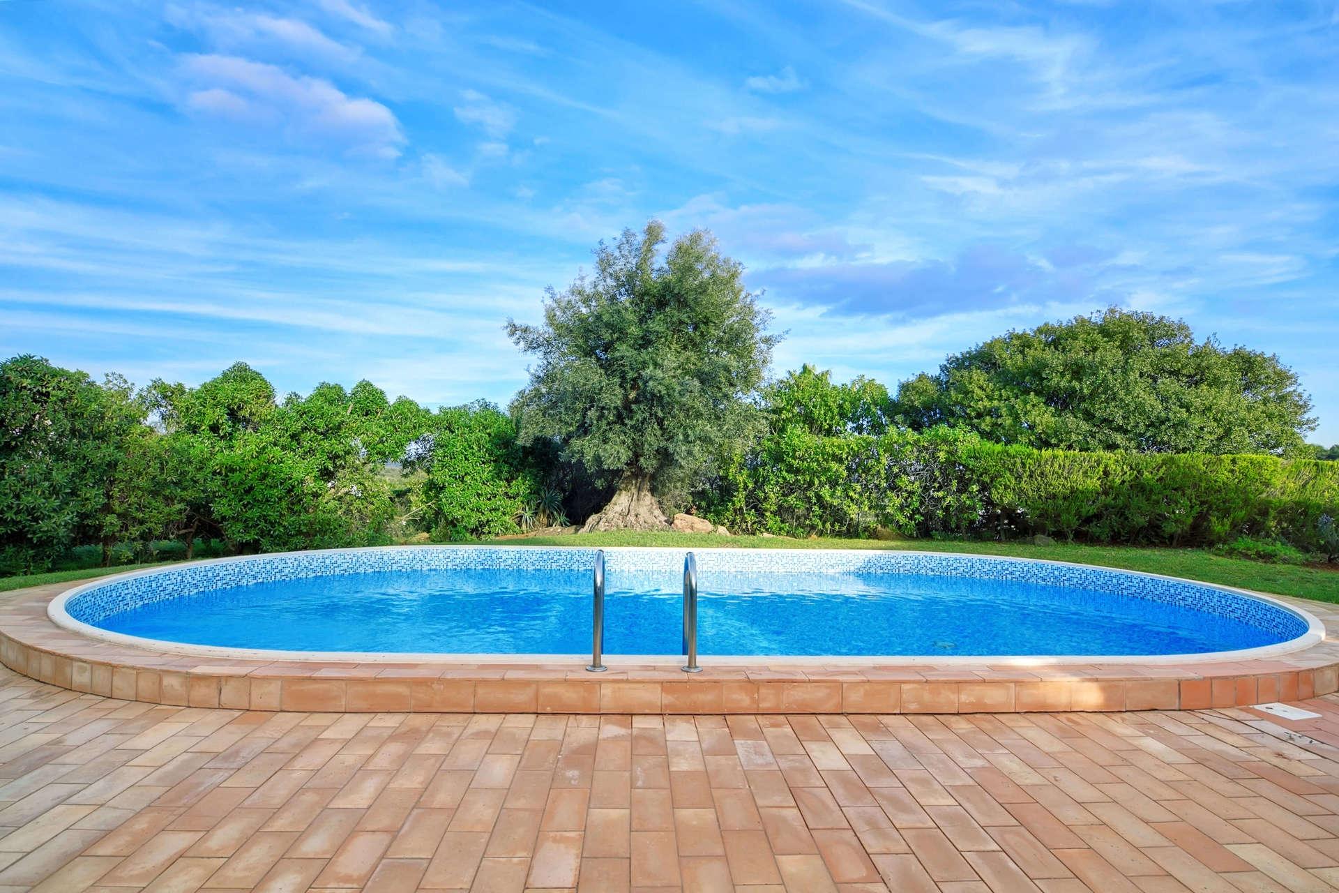piscina blu in mezzo agli alberi sotto il cielo blu