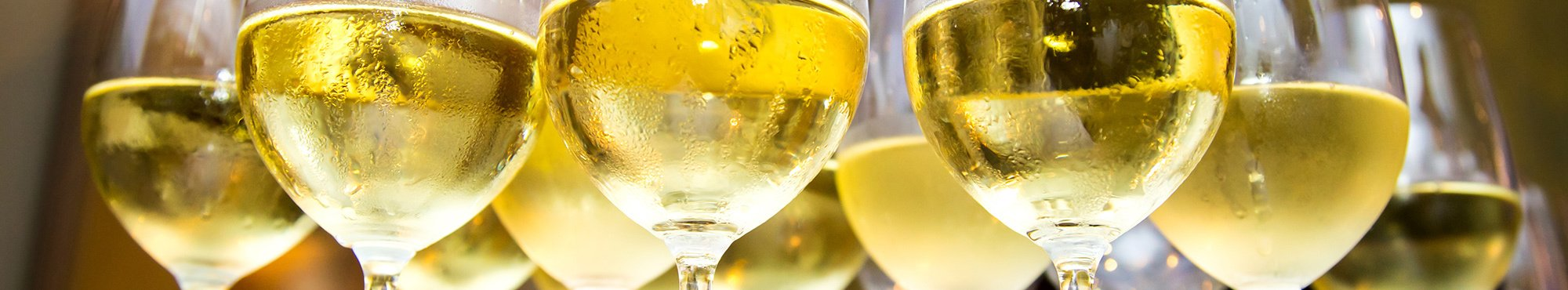 Close up of of wine glasses filled with white wine