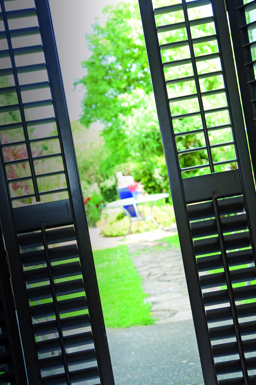 door with blinds