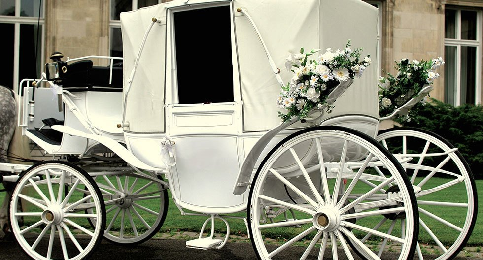 white coloured horse carriage