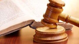 martello e costituzione