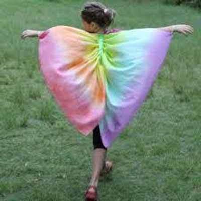 bambina con vestito da farfalla