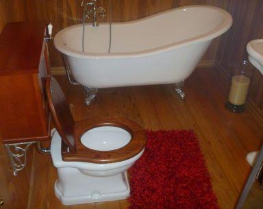 Bathroom fixed by plumbers in Dunedin
