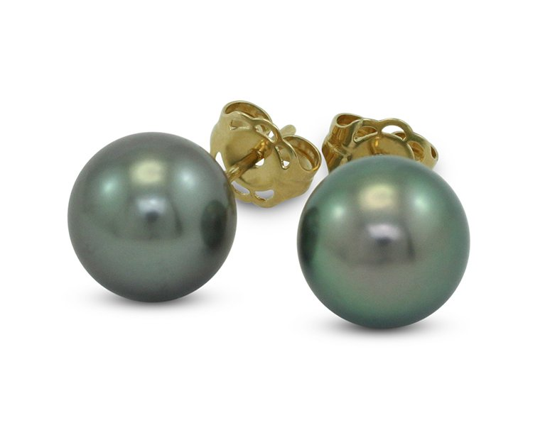 girls love pearls tahitian south sea yellow gold round stud earrings