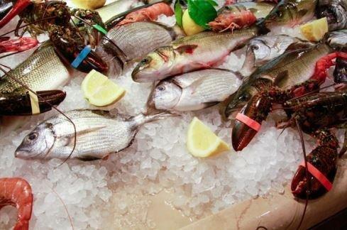 Menu di pesce La tana marina