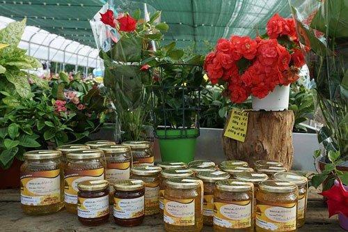 dei vasetti di miele e dei fiori rossi