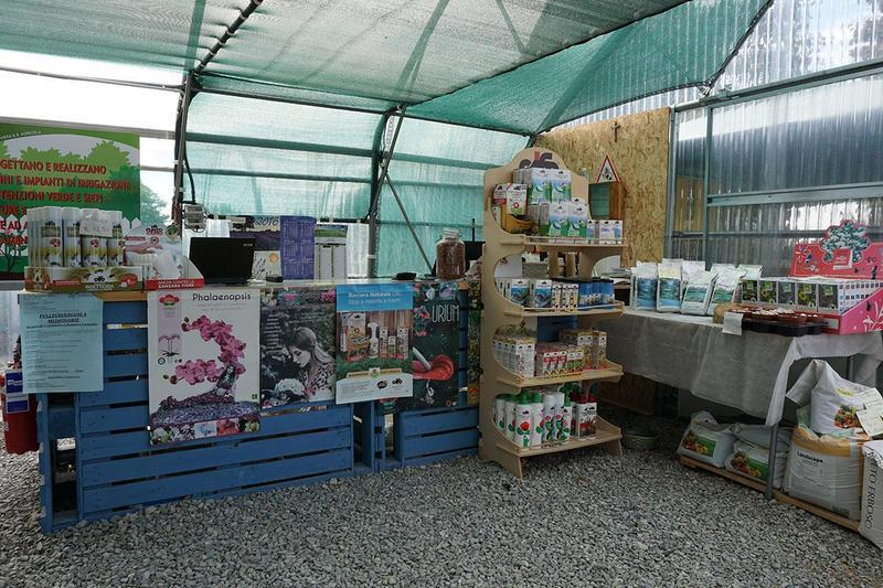 un bancone e dei piccoli scaffali in legno con dei prodotti