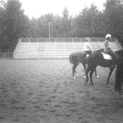 realizzazione tribuna per rodeo