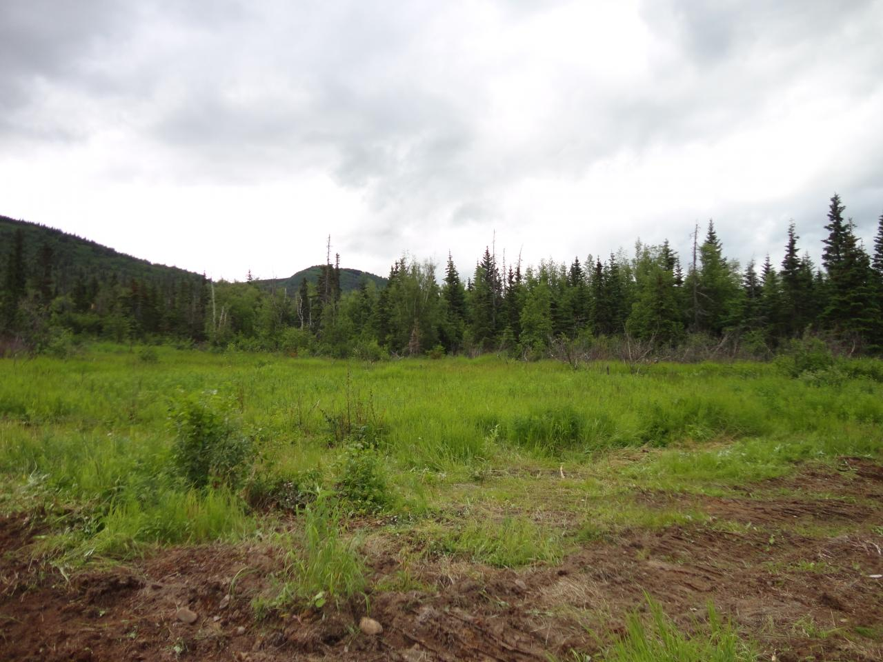View of the site before land cleaning in Anchorage, AK