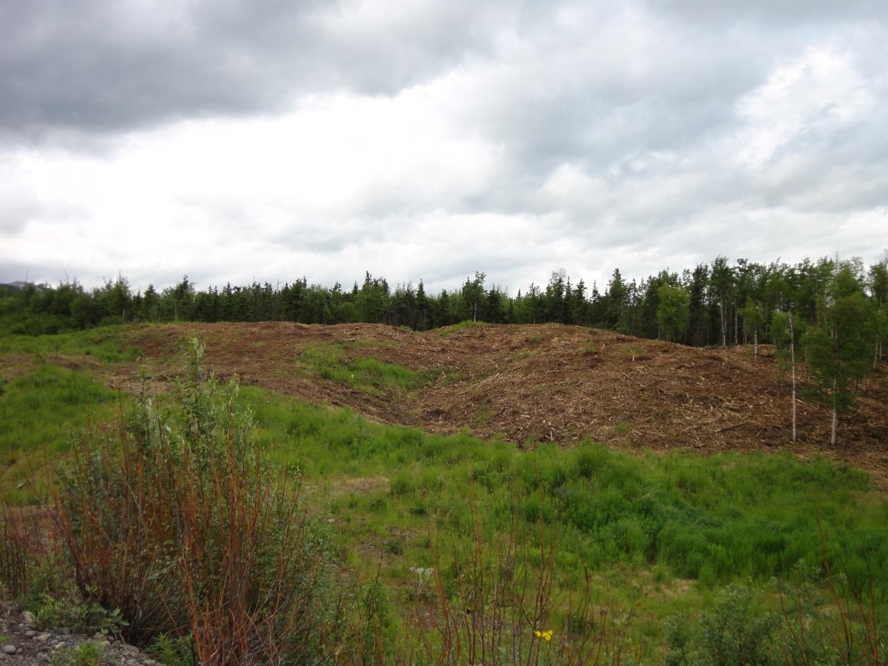 View of the Fort Richardson gun range after land clearing in Anchorage, AK