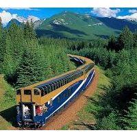 treno in mezzo alla foresta