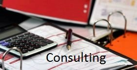 Small Business Consulting and Industry Data Analysis