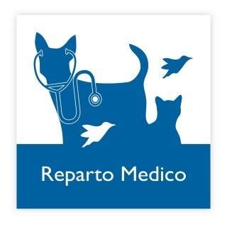 reparto medico veterinario