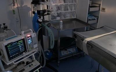 Ambulatorio veterinario a torino