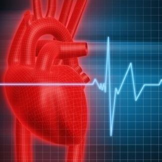 check up cardiologico cane e gatto