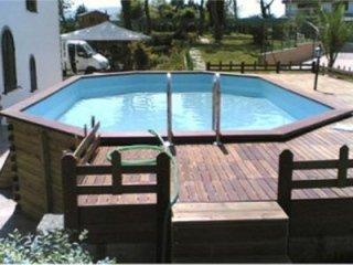 Raised lagoon swimming pool