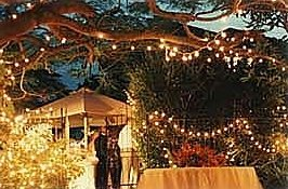 Fairy lights being used for decoration